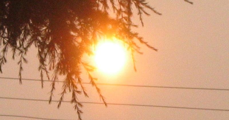 UAE Police Caution Residents Against Heatstroke